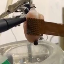 Multi-Electrode Array